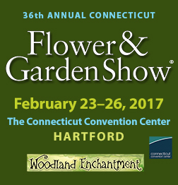 36th Annual Connecticut Flower And Garden Show Connecticut Convention Center